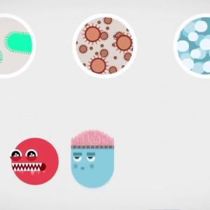 Как функционира имунната система видео